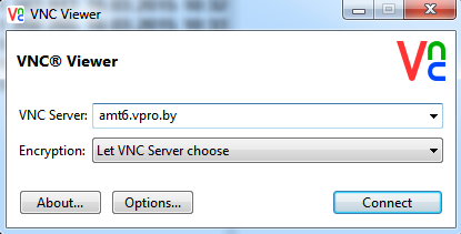 AMT RealVNC Viewer interface